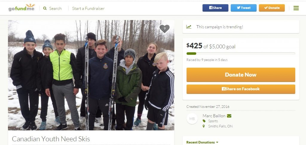 screenshot of our GoFundMe page